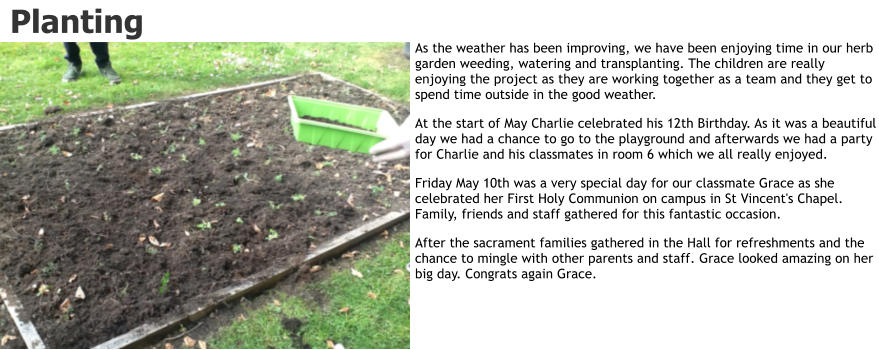 Planting As the weather has been improving, we have been enjoying time in our herb garden weeding, watering and transplanting. The children are really enjoying the project as they are working together as a team and they get to spend time outside in the good weather. At the start of May Charlie celebrated his 12th Birthday. As it was a beautiful day we had a chance to go to the playground and afterwards we had a party for Charlie and his classmates in room 6 which we all really enjoyed. Friday May 10th was a very special day for our classmate Grace as she celebrated her First Holy Communion on campus in St Vincent's Chapel. Family, friends and staff gathered for this fantastic occasion.  After the sacrament families gathered in the Hall for refreshments and the chance to mingle with other parents and staff. Grace looked amazing on her big day. Congrats again Grace.